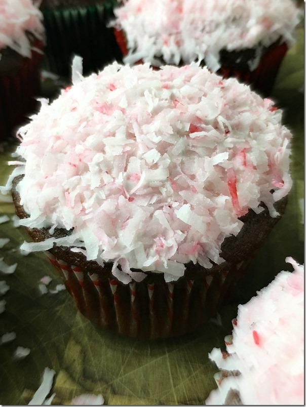 Chocolate_Cupcakes_with_Marshmallow_Coconut_Icing_YoursAndMineAreOurs3