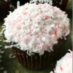 Chocolate Cupcakes with Marshmallow Coconut Icing